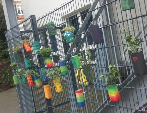 Nachhaltigkeitstage an der Elisabethenschule Hofheim 2017