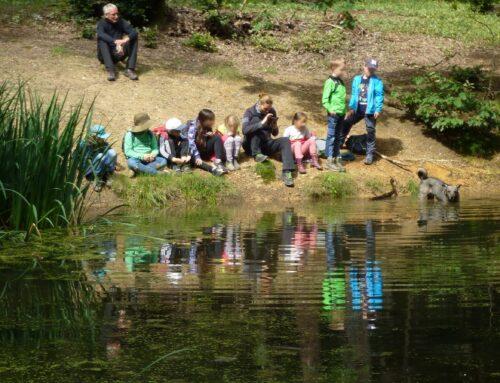 Naturcamp im Wald, Wiese und am Teich